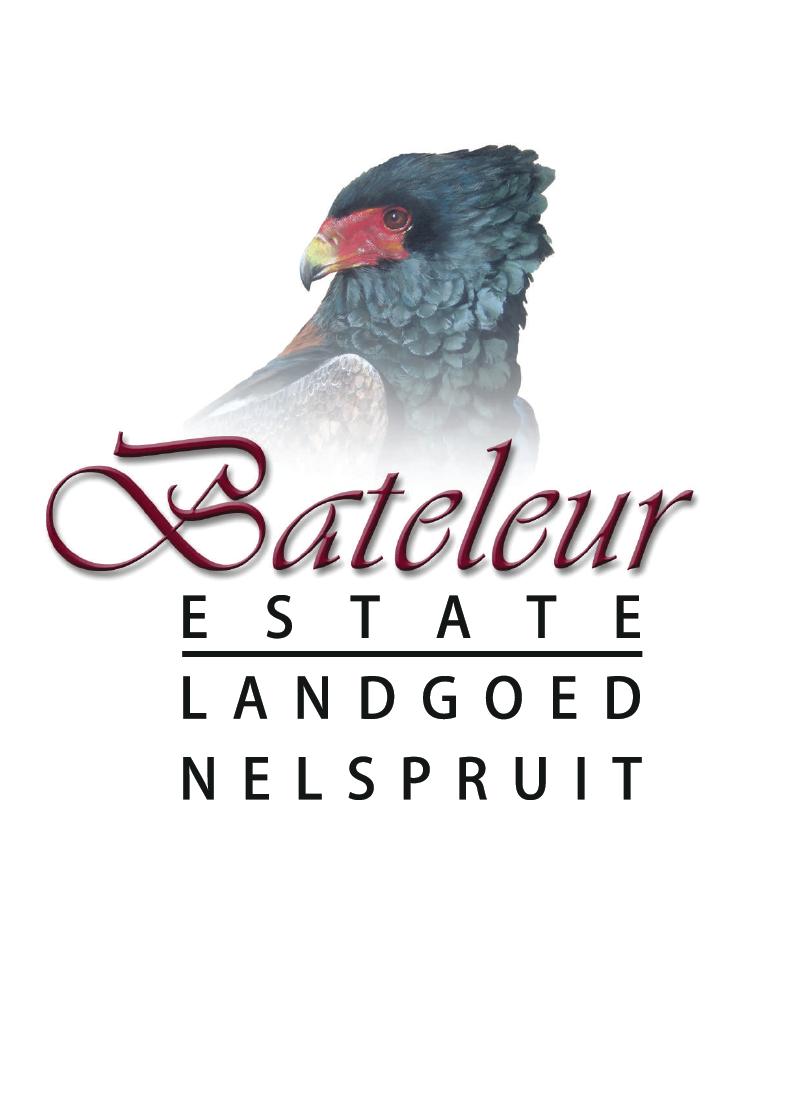 Bateleur Logo-01
